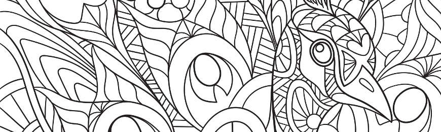 Adult Coloring In by Wall Art Prints