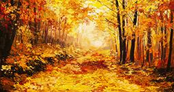 Wall Art Prints - Autumn Art