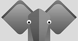 Wall Art Prints - Elephant Art