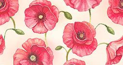 Wall Art Prints - Flower Patterns