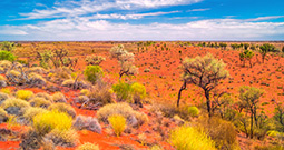Wall Art Prints - Outback Photography