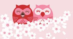 Wall Art Prints - Owl Art