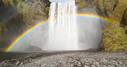 Wall Art Prints - Rainbow Pictures