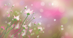 Wall Art Prints - Spring Pictures