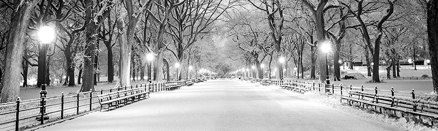 Winter Pictures by Wall Art Prints