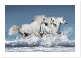 Mammals Art Print 100146913