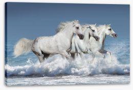 Mammals Stretched Canvas 100146913