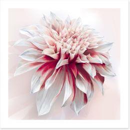 Floral Art Print 101032828