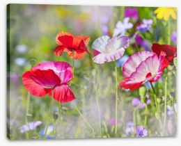 Beautiful Spring Stretched Canvas 101441423