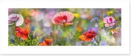Spring meadow panorama