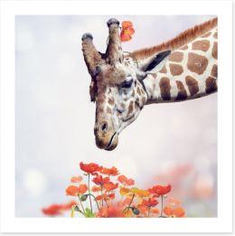 Animals Art Print 102330882
