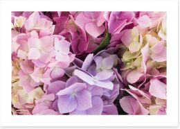 Flowers Art Print 113360649