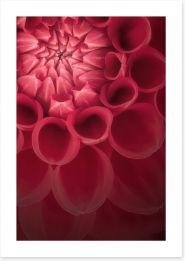 Flowers Art Print 118554822