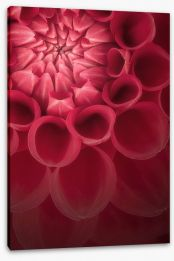 Flowers Stretched Canvas 118554822