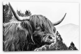 Mammals Stretched Canvas 119638527