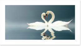 Love swans panorama Art Print 12112158
