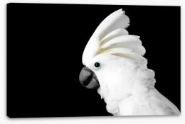 Birds Stretched Canvas 121497468