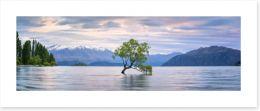 Lake Wanaka panoramic Art Print 127994307