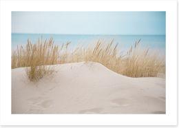 Beaches Art Print 128062956