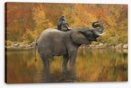 Mammals Stretched Canvas 128407604