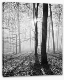 Black and White Stretched Canvas 132927774