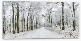 Forests Stretched Canvas 136150323