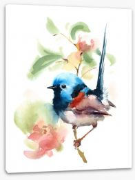 Little fairy wren Stretched Canvas 137536615
