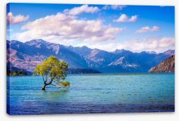 New Zealand Stretched Canvas 138126835