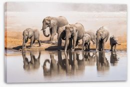 Africa Stretched Canvas 139939761