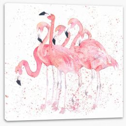 Birds Stretched Canvas 142246311
