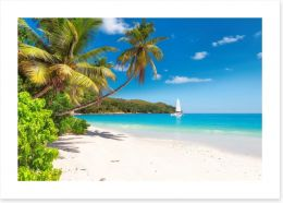 Beaches Art Print 148078888