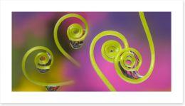 Raindrop curls Art Print 155952368