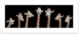 Seven giraffes Art Print 159732335