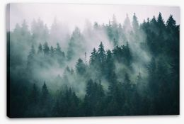 The fading forest Stretched Canvas 167720092