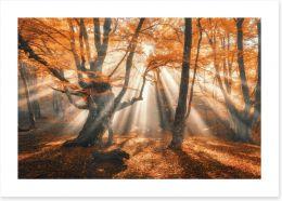 Autumn Art Print 169347821