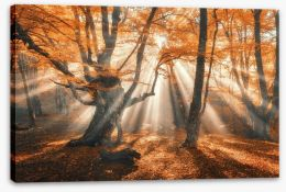 Autumn Stretched Canvas 169347821