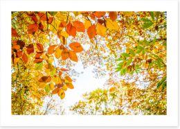 Leaves Art Print 169391844