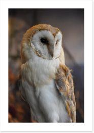 Birds Art Print 17013227