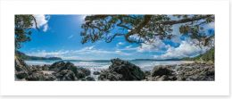 New Zealand Art Print 171447431