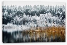 Winter Stretched Canvas 188755439