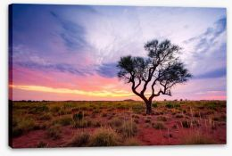 Outback Stretched Canvas 192559572