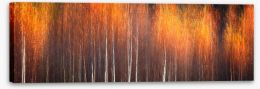Autumn Stretched Canvas 192849215