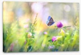 Meadows Stretched Canvas 193404522