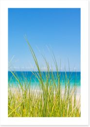 Beaches Art Print 195349179