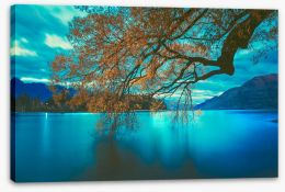 New Zealand Stretched Canvas 205019994