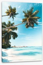 Beaches Stretched Canvas 206575274