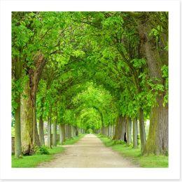 Trees Art Print 208145174