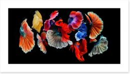 Abstract Art Print 209976730