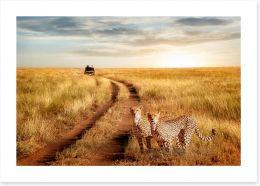 Africa Art Print 211045712