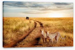 Africa Stretched Canvas 211045712